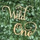 Wild One Wall Hanging Event Sign